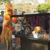 Halloween : pour ou contre une parade de chiens déguisés ?