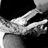 Evi'dence : une association de médiation animale qui aide les personnes incarcérées à se construire un avenir meilleur