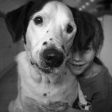 Les 10 choses qui prouvent que votre chien est le meilleur des amis !