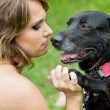 Selon cette enquête, 38% des gens préfèrent leur chien à leur conjoint !