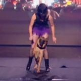 Incroyable Talent : le dog dancing triomphe