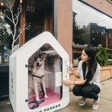 Oseriez-vous enfermer votre chien dans cette boîte ?