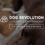 Dog Revolution: 2 jours pour comprendre le comportement canin et mieux l'appréhender