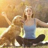 Le doga : quand le yoga se développe pour les chiens