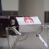 Fabriquez votre chien-robot pour moins de 3000 euros !
