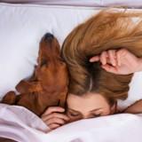 Les femmes qui dorment avec leur chien passeraient de meilleures nuits