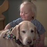 Et si nos émotions influençaient nos chiens ? (Vidéo du jour)