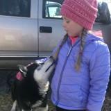 Cette fillette atteinte d'un cancer ne souhaite qu'une chose : recevoir des lettres de chiens du monde entier