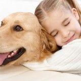 Les enfants qui vivent avec un chien auraient moins de risques de souffrir d'asthme et d'eczéma