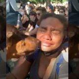 #BlackLivesMatter : Cette Dobermann a réconforté les participants d'une manifestation anti-violence policière (Vidéo)