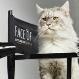 Face of Amazon Pets 2019 : et si votre animal devenait la nouvelle mascotte de l'animalerie en ligne ?