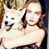 Les chiens, nouvelles stars de la Fashion Week de New-York !