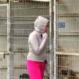 Elle n'arrive pas à choisir quels chiens sauver et décide d'acheter tout le refuge !