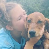 Les retrouvailles entre cette fillette et ses chiens perdus pendant l'ouragan sont adorables (Vidéo du jour)