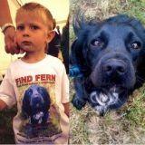 """A 4 ans il écrit sa toute première lettre, aux """"méchants hommes"""" qui ont volé son chien"""