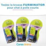 Testez gratuitement la brosse FURminator pour chat à poils courts !