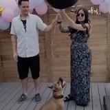 Ils organisent une fête pour annoncer le sexe du bébé : leur chien arrive et rien ne se passe comme prévu (vidéo)
