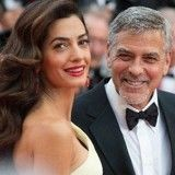 George et Amal Clooney font don de 10 000 dollars pour aider des chiens sauvés d'un atroce élevage