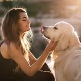 3 règles à connaître avant de confier votre chien à quelqu'un en votre absence