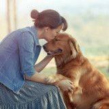 Son chien s'approche d'elle et semble bizarre, quand elle comprend pourquoi elle a les larmes aux yeux