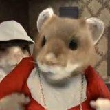 Des hamsters stars d'une pub télé