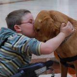 Handi'Chiens : 25 ans, 1800 chiens d'assistance remis et tant de bonheur pour leurs maîtres