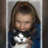 Bénévolat dans un refuge : elle aperçoit un chat et son souffle se coupe quand elle réalise la vérité