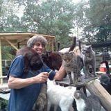Après la mort de son fils, cet homme a ouvert un sanctuaire pour 300 chats pour lui rendre hommage