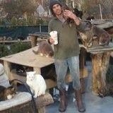 Il transforme sa maison en refuge pour chats errants après le décès de son fils