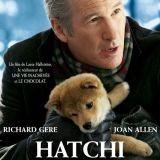 Hatchi, l'histoire vraie du plus fidèle des chiens