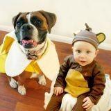 Adorable ! Depuis 5 ans, ce petit garçon et son chien fêtent Halloween ensemble (Photos)