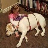Une petite fille gravement malade a eu la vie sauve grâce à son chien