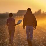 Son GPS l'emmène au milieu d'un champ de maïs : ce qu'il y découvre le fait trembler de la tête aux pieds