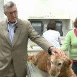Un homme et un chien reçoivent le même traitement contre le cancer