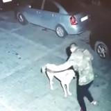 Au milieu de la nuit, un homme voit une ombre s'approcher de lui : sa réaction bouleverse Internet