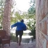 L'éleveuse rencontre un client : quelques secondes après avoir ouvert la porte, tout vire au drame