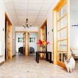 Covid-19 : cet hôtel pour chats ouvre ses portes gratuitement aux animaux des personnes hospitalisées