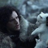 Vague d'abandons de Huskies à cause de Game of Thrones