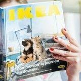 Ikea va commercialiser des accessoires pour chiens et chats !