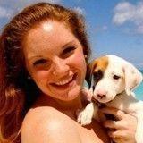 Les Caraïbes, nouveau paradis pour chiens à adopter !
