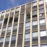 Un chat saute du 5e étage d'un gratte-ciel en feu, puis fait quelque chose qui étourdit les passants