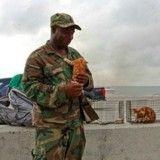 Ce soldat a sauvé un minuscule chaton de l'ouragan Irma