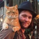 Bob et James, ou l'histoire d'un chat et d'un homme qui se sont sauvé la vie