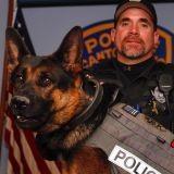 Emue par la mort d'un chien policier, elle collecte de l'argent pour offrir des gilets pare-balles à ses comparses