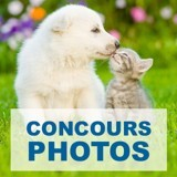 Concours photos : votre chiot et ses copains