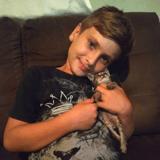 Un petit garçon croise un chaton qui ne peut pas marcher et décide de changer sa vie