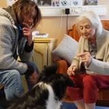 Grâce à Lola, chienne médiatrice, une dame âgée atteinte d'Alzheimer reprend goût à la vie