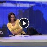 Un chien fait le buzz en interrompant le JT en direct !