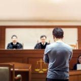 Maltraitants d'animaux : ce juge leur donne des sanctions spéciales pour leur faire comprendre le mal qu'ils ont fait