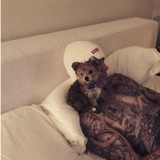 Justin Bieber et Hailey Baldwin sont les heureux parents d'un chien